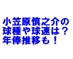 小笠原慎之介