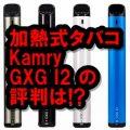 Kamry GXG I2